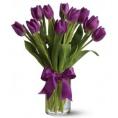 Valentine Passionate Purple Tulips