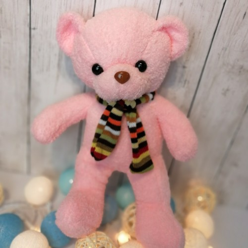 Teddy Bear in Pink 10 Inches
