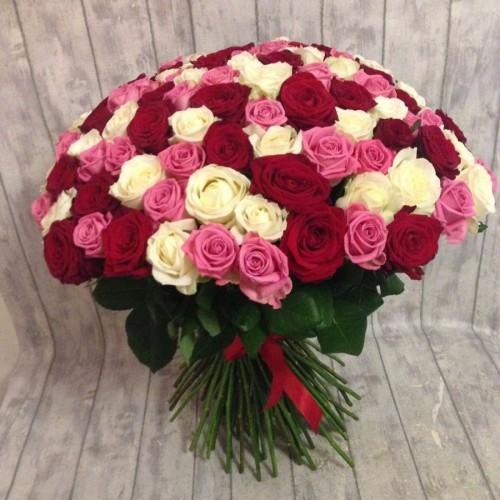 My Angel 100 Pcs Roses
