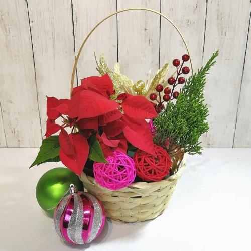 Merry Christmas My Dear