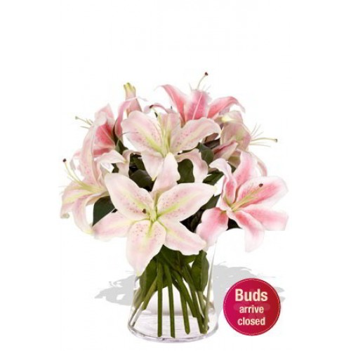 4 Oriental Lily in Vase