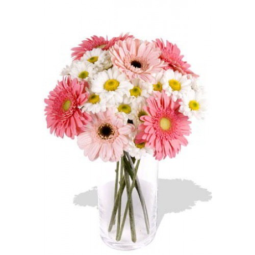 16pcs Mixed Gerbera and Chrysathemum Vase Bouquet