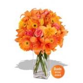 Asiatic, Gerbera and Rose Bouquet