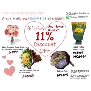 11.11 Discount Promotion