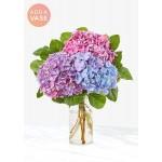 The Andrea Vase Bouquet - Three Hydrangea
